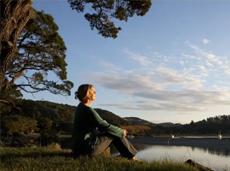 Ciência e espiritualidade: buscando o elo para entender a saúde e a doença