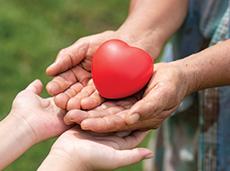 Cardiopatia congênita: diagnóstico precoce é essencial para tratamento